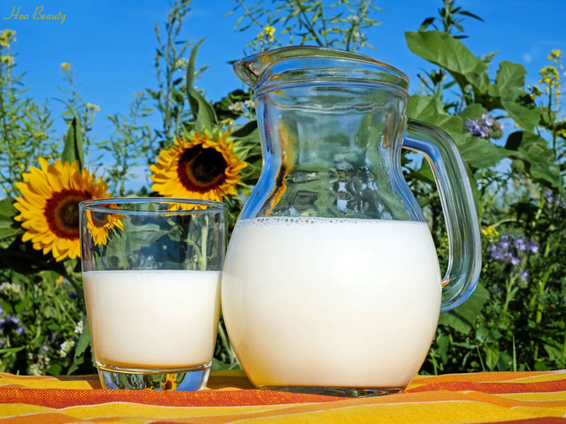Kem đánh răng kết hợp với sữa tươi sẽ phục hồi làn da thô ráp, đen sạm trở nên căng mịn, tràn đầy sức sống