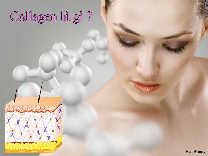 Collagen là gì và những tác dụng collagen mang lại