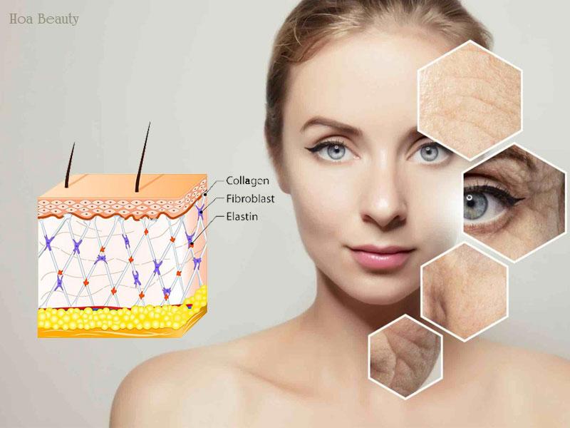 Làn da thiếu hụt Collagen qua từng độ tuổi, các dấu hiệu lão hoá biểu hiện rõ rệt.