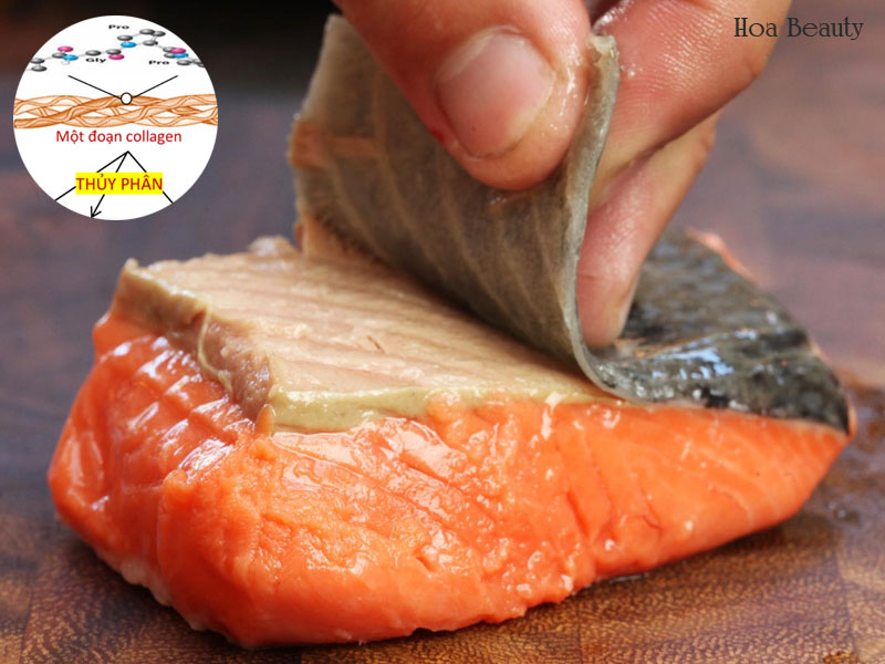 Uống Collagen mang lại hiệu quả nhanh chóng, đặc biệt là Collagen có nguồn gốc từ cá.