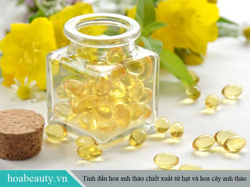 Tinh dầu hoa anh thảo được chiết xuất từ hạt của cây hoa anh thảo.