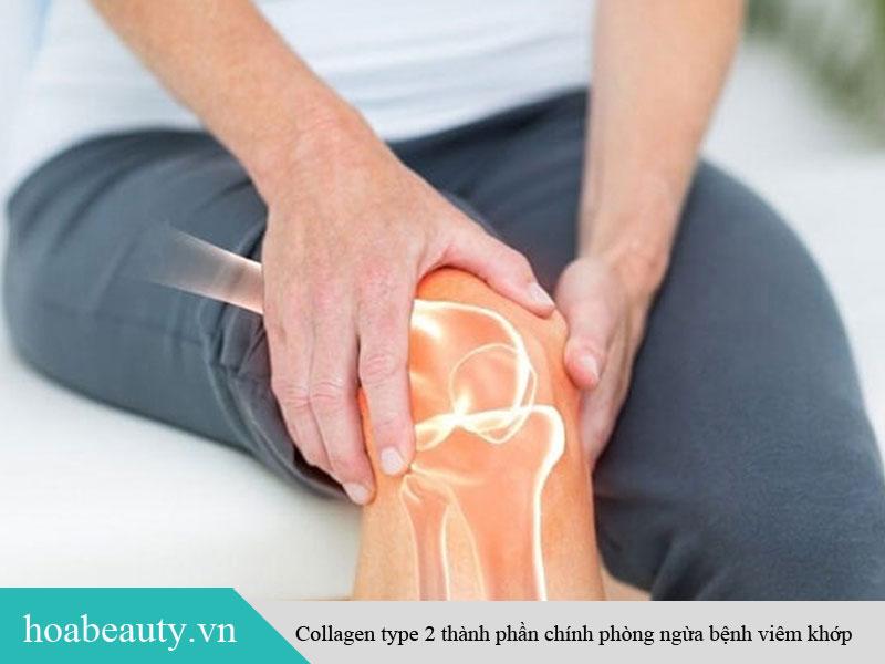 Collagen Type 2 có tác dụng phòng ngừa viêm khớp dạng thấp