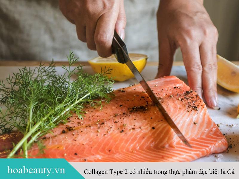 Cá là thực phẩm giàu dinh dưỡng, chứa nhiều Collagen Type 2