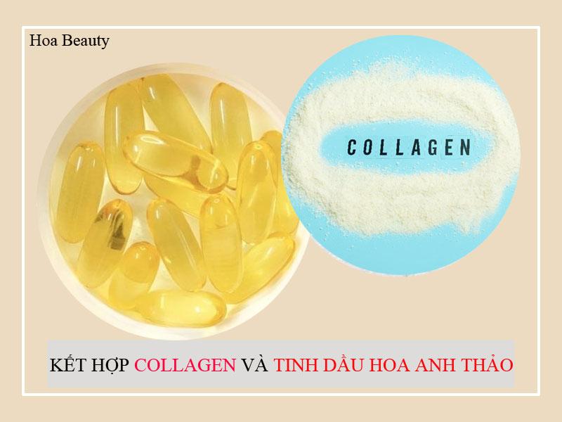 Kết hợp sản phẩm Collagen và tinh dầu hoa anh thảo